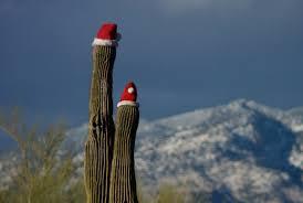 8 arizona towns to celebrate christmas this year