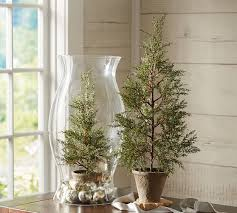 faux potted mini pine tree pottery barn decor and