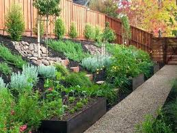 Small Sloped Garden Design Ideas Landscaping Ideas For Small Sloping Backyards Design Of Sloping