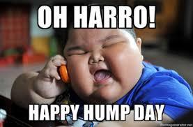 Happy Hump Day Memes - happy hump day bosguy