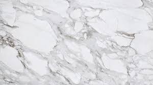 white marble calacatta borghini marble a veiny white countertop material