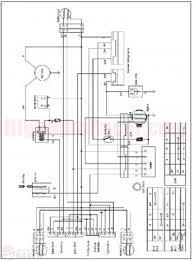 quadzilla wiring diagram kazuma wiring diagram wiring diagram odicis