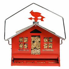 amazon com perky pet squirrel be gone ii country house bird
