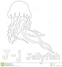 j for jellyfish coloring page stock illustration image 39701559
