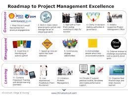 thrust consult dsm project management proces