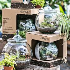 nurseries in atlanta homewood nursery faq u2014 garden terrarium kits