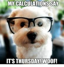 Thursday Funny Memes - thursday animal meme images funny pictures photos gifs archives