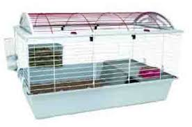 Rabbit Hutch Set Up Rabbit Cage Enclosures And Hutches Buying Guide