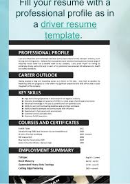 Profile In Resume What Is New In Resume Templates 2016
