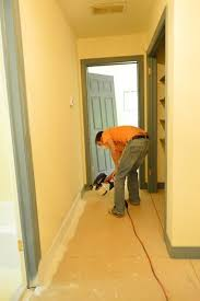 painting doors and trim different colors 85 best painting staining images on pinterest color palettes