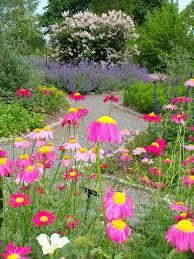 transform the yard into a butterfly haven u2014 living u2014 bangor daily