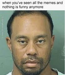 Funny Drunk Memes - tiger woods memes