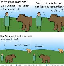 Bear Stuff Meme - funny bear cartoon comic strip
