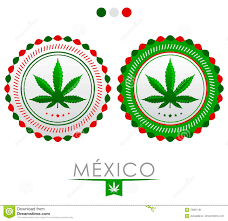 mexico marijuana emblem vector cannabis seal of approval with
