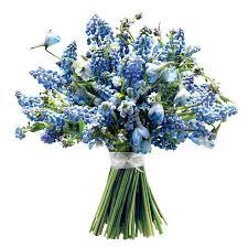 Wedding Flowers Near Me Best 25 Muscari Wedding Bouquet Ideas On Pinterest Muscari