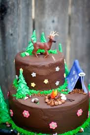 45 best campout birthday images on pinterest event photographer