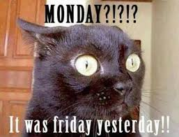 Monday Meme Images - 20 happy monday memes skinny ninja mom