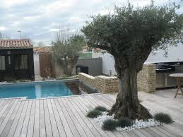 cuisine de r黐e cuisine d ete piscine porto vecchio villa for sale in cirindino