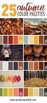 the 25 best autumn color palette ideas on pinterest fall color