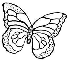 14 best rainforest resources images on pinterest paper flowers