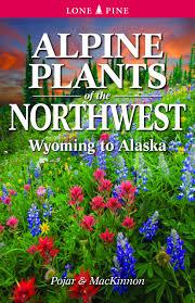 alaska native plants alpine plants of the northwest wyoming to alaska andy mackinnon