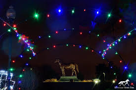fantasy in lights military discount southern lights home facebook