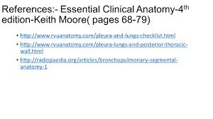 clinical anatomy by moore images learn human anatomy image