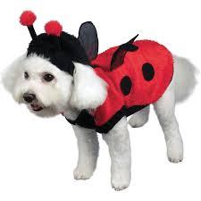 ladybug halloween costume buy lovely ladybug dog costume