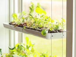 herb garden inhabitat green design innovation architecture