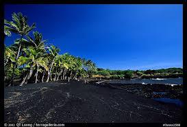 black sand beach big island picture photo black sand beach at punaluu big island hawaii usa