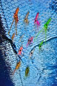 field u0026 fly bench u2013 fishing with jay