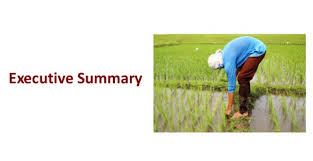 introduction to executive summary writing an agricultural