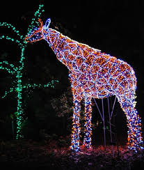 Oregon Garden Christmas Lights 963 Best ᏟᎻᎡḭᏚᎢᎷᎪᏕ Lights Nights Of Light Images On