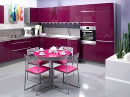 meuble de cuisine aubergine meuble cuisine aubergine cuisine girly de couleur aubergine porte