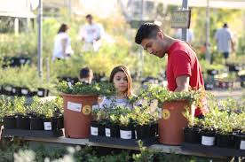 rancho santa ana has spring plant sale and free admission march 11