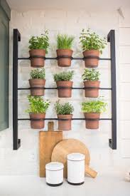Wall Mounted Planters by Best 20 Herb Rack Ideas On Pinterest Pallets Garden Patio Herb