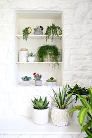 Home Plant Decor by Are You Faux Real How To Find The Most Convincing Faux Plants