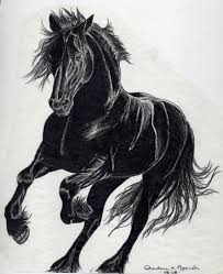 Horse Tattoo Ideas 98 Best Horse Tattoos Images On Pinterest Tattoo Horse Horses