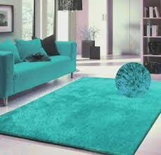 Turquoise Area Rug Luxury Viscose Shag Collection Turquoise Shag Area Rug 5 X7