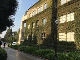 Best Children S Stores Los Angeles Top 10 Things To Do Near University Of California Los Angeles Ucla
