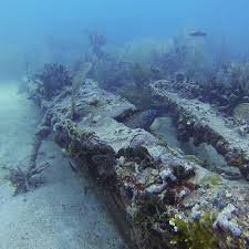 dive sites scuba diving in miami fl best scuba diving classes