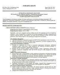 killer resume examples sample resume objective for a salesperson