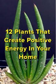 14 best home decor ideas images on pinterest gardening a well