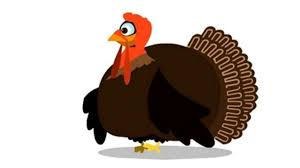 funny thanksgiving joke funny thanksgiving turkey life e cards ladybugecards com video