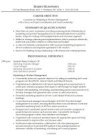 summary on a resume exles professional summary exles for resume adorable summary exles