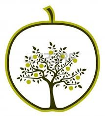 apple tree many fruit coloring page tree coloring page clipart