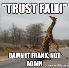 Fall Memes - trust fall damn it frank not again giraffe quickmeme