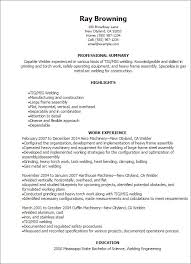 exles of professional summary for resume welder resume exle template professional templates showcase