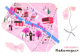 Cherry Blossom Map Maps U0026 Others On Behance