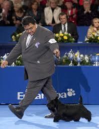 the akc eukanuba national chion is popsugar pets